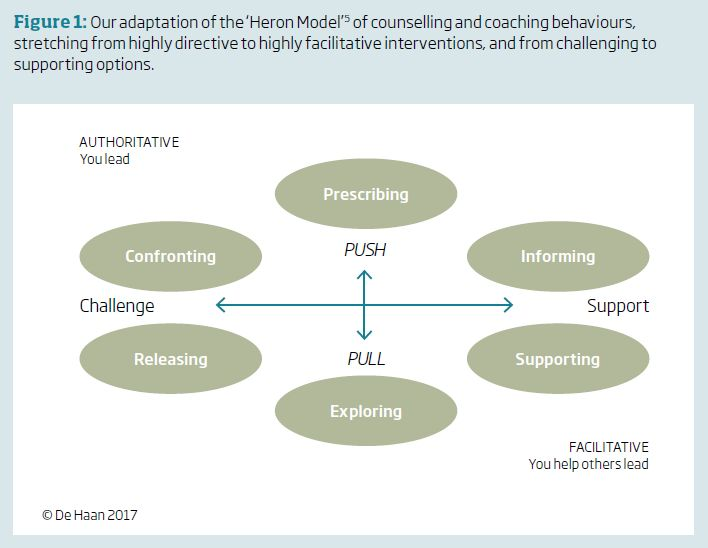 Figure 1: Our adaptation of the 'Heron Model' 5 of counselling and coaching behaviours, stretching from highly directive to highly facilitative interventions, and from challenging to supporting options.