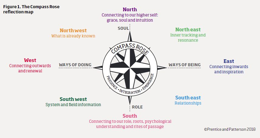 Figure 1 The Compass Rose reflection map