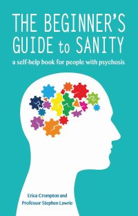 Cover of The beginner's guide to sanity